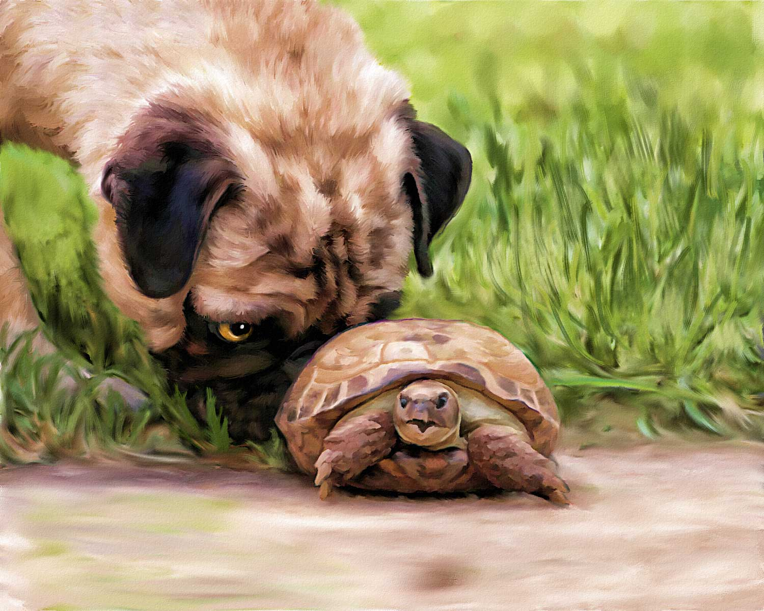 Painting dog with turtle