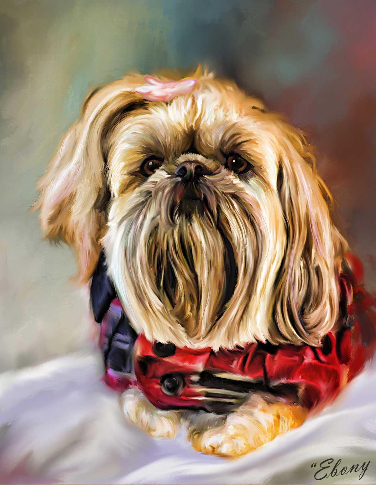 portrait of shih tzu